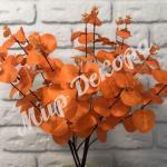 Куст эвкалипта, оранжевый
