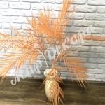 Ветка пальмы. Оранжевый