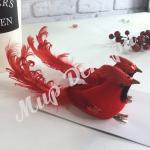 Птица красная пара.