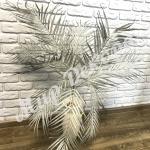 Ветка пальмы. Серый