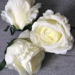 Голова розы, 10 шт. молоко