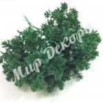 Пик « Каменный цветок» . Зелёный