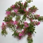 Маленькие веточки лаванды. 100 шт. Розовая.