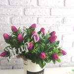 Букет тюльпанов мелких . Фуксия.
