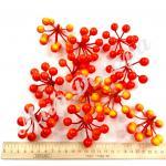 Гроздь ягод оранжевая . 25 штук