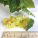 Виноград 10 см. Желтый
