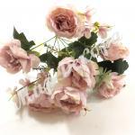 Роза пионовидная розовая пудра.