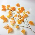 Ветка березы  оранжевая . 6 штук