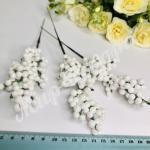 Ягода белая « Облепиха». 25 штж