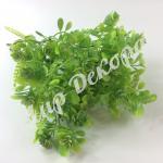Трава декоративная салатовый .