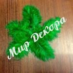 Набор перьев марабу 20 штук. Темно зеленые. Декор для украшения свадеб, создания поделок своими руками, канзаши, создания  топиариев.