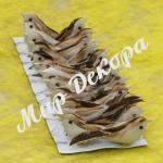 Птицы декоративные серые