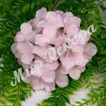 Голова гортензии, нежно-розовый