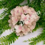 Голова гортензии, розовая пудра