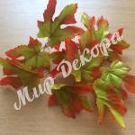 Листья осенние. Красные.