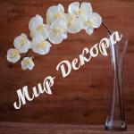 """Орхидея силиконовая кремовая 100см  купить оптом цветы силиконовые Высококачественная искусственная орхидея. Каждая ветка насчитывает 10 раскрывшихся цветков. Стебель гнется и """"запоминает"""" необходимое Вам положение. Отличное решение для оформления свадеб, праздников, а также декорирования интерьера."""