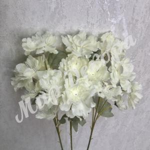 Цветок декоративный . Молоко