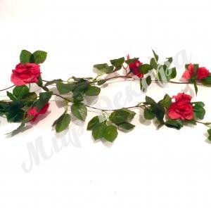 Лиана с красными розами .
