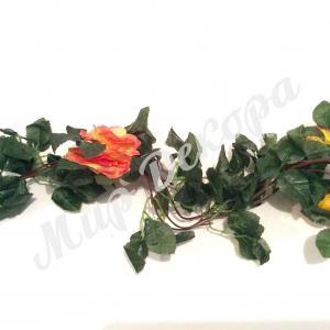 Лиана с желтыми розами
