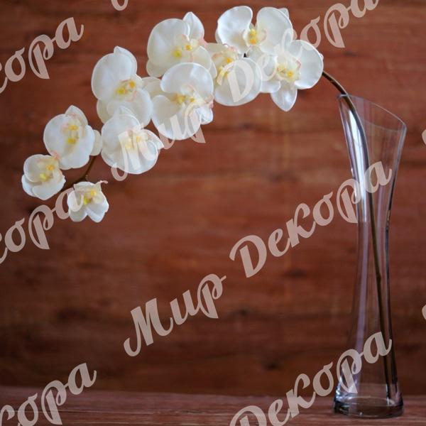 Купить силиконовые цветы орхидеи купить розы в бахчисарае